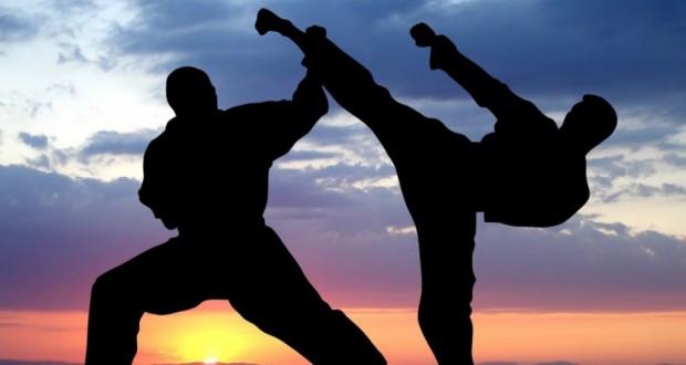 karate delhi